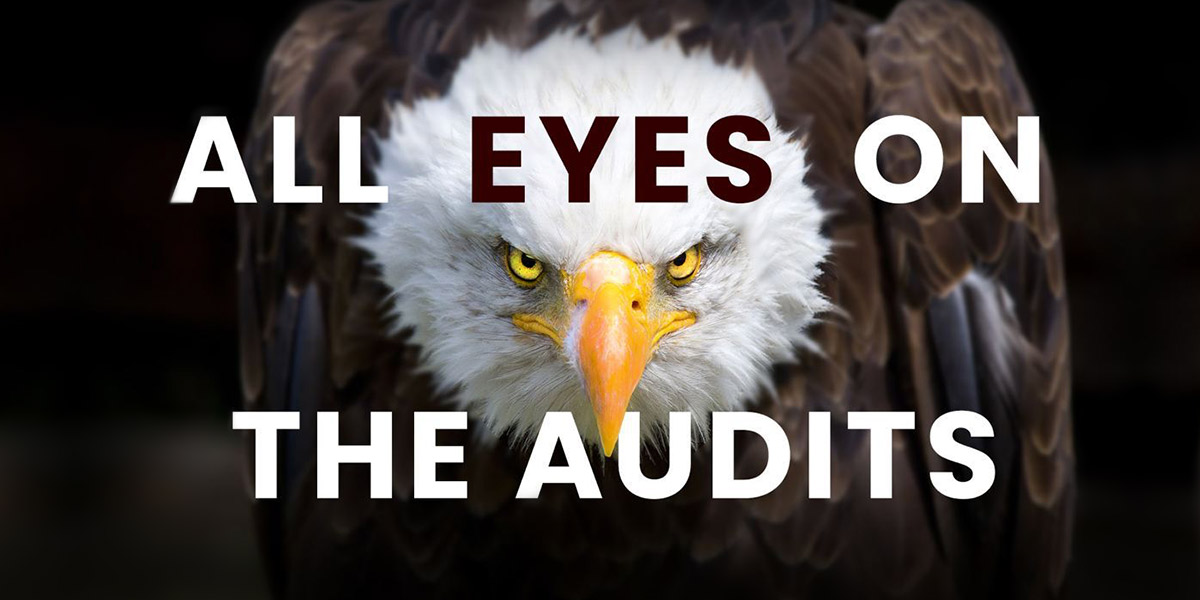 Bald Eagle - All Eyes On The Audits